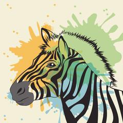 zebra icon. Animal and art design. Vector graphic