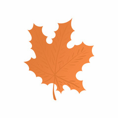 Maple leaf icon in cartoon style isolated on white background. Tree symbol