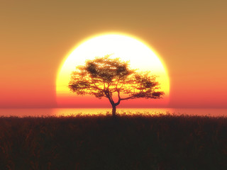 3D tree against a sunset sky