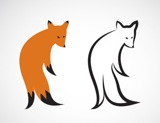 Vector group of fox design on white background. Vector fox for y