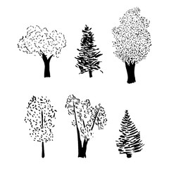 tree sketch set