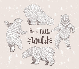 "Set of sketched bears with the stylish hipster calligraphy ""Be a little wild"". Vector hand drawn illustration."