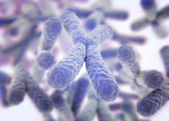 Chromosome, X. 3d illustration.