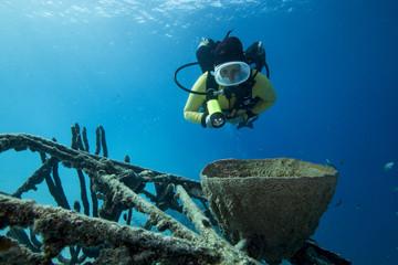 Unterwasser - Riff - Taucherin -Wrack - Flugzeugwrack - Tauchen - Curacao - Karibik
