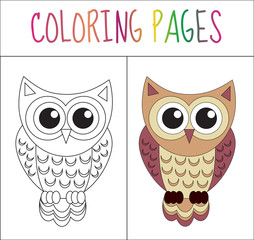 Coloring book page. Owl. Sketch and color version. Coloring for kids. Vector illustration