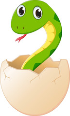 cute cartoon  snake hatching