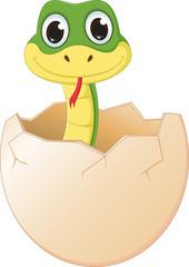 cute cartoon  snake hatching