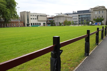 Close up of a fence in Dublin City center parks