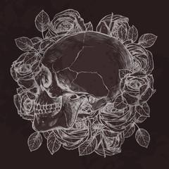 Skull And Roses In Profile In Profile
