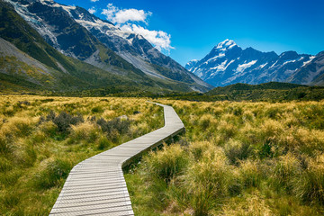 Obraz Mount cook from the Hooker Valley, Mt cook is New Zealand highest Mountain - fototapety do salonu