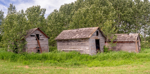 Old farm sheds on the prairies in Saskatchewan on a summer day.