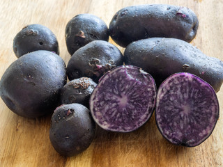 Blue potatoes fresh from the garden