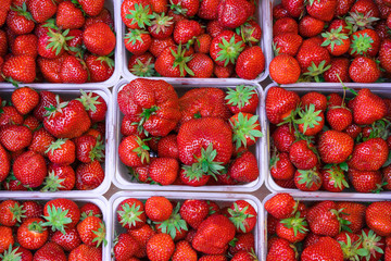 Fresh strawberry in baskets on the market. High resolution product.