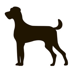 black silhouette large dog isolated on icon design, vector illustration, graphic.