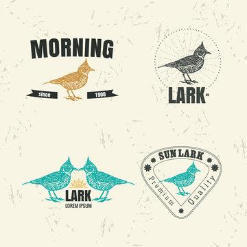 Vector colorful set with desert Crested lark bird. The lark bird as main element of logotypes on beige background. Engraves vector design graphic element, emblem, logo, sign, identity, logotype