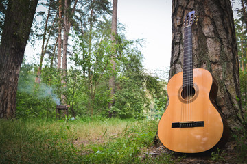 Guitar near a tree in the forest on the background of the barbecue. Summer Camping