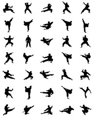 Black karate silhouettes on the white background, vector