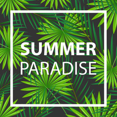 Vector Illustration of an Abstract Summer Design with Tropical Leaves
