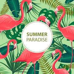 Vector Illustration of an Abstract Summer Design Template with Flamingos