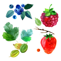 Watercolor summer set. illustration with strawberries, raspberries, blueberries, gooseberries and leaves. Summer template. hipster background. Berry set