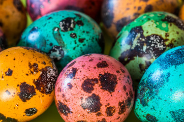 Colorful easter partridge eggs