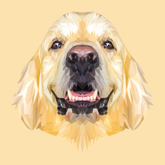 Golden Retriever Dog animal low poly design. Triangle vector illustration.