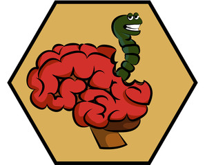 The worm affects the brain