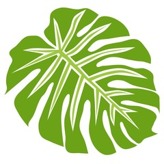Tropical plant philodendron, isolated vector