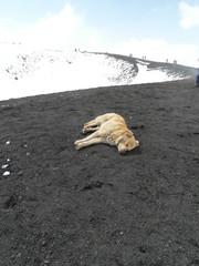 Etna Volcano, Sicily island in Italy