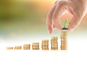 Investment concept: Human hand holding one coin with smalltree and stacks of golden coins over blurred nature background.