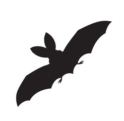 vector silhouette of a flying bat