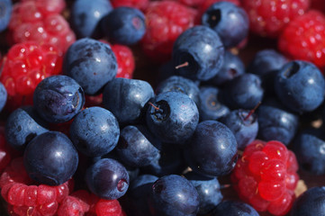 Juicy mature berries of bilberry and raspberry close up. Berry background