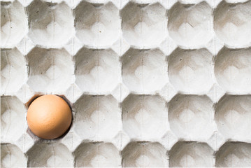 egg in in the paper panel package
