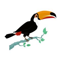 Toucan Bird Flat Design Vector Illustration