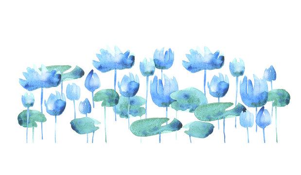 simple water lotus blooming flowers. watercolor hand drawn illus