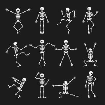 Skeleton dance. Funny dancing skeleton vector illustration