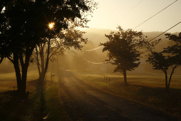 Foggy sunrise over a country road near Fayetteville, WV
