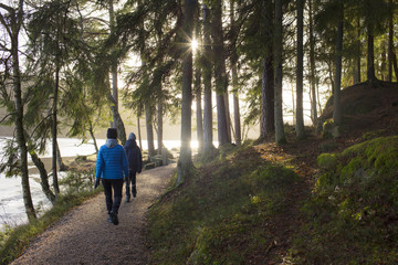 Rear view of mother and son walking in forest