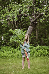 Sweden, Sodermanland, Girl (4-5) standing on grass and holding large rhubarb leaves