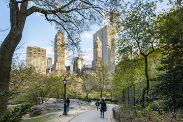 USA, New York State, New York City, Manhattan, Trees in Central Park with skyscrapers in background