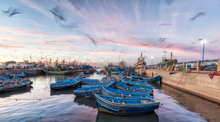 Photo sur Plexiglas Maroc Morocco waterfront at sunset with motion blur of seagulls flying over blue boats