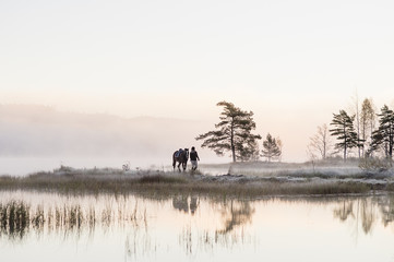 Sweden, Vastmanland, Bergslagen, Hallefors, Grythyttan, Bovik, Young woman walking with horse along lake shore