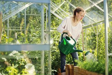 Finland, Heinola, Paijat-Hame, Woman watering plants in greenhouse