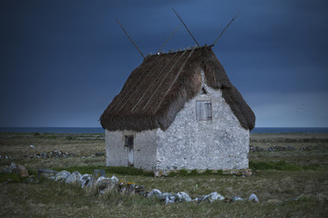 House with thatched roof in field at dusk