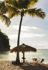 West Indies, Saint Lucia, Tropical beach by sea