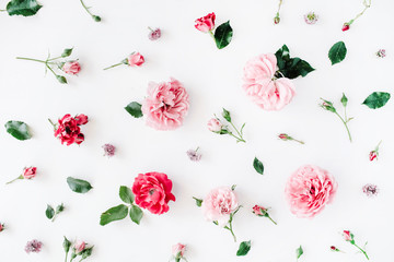Roses, chamomiles and green leaves on white background. Flat lay, top view