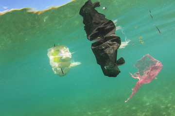 Plastic pollution in sea