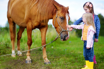 Two cute little sisters petting a horse in countryside