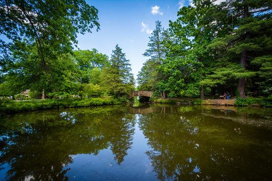 Pond at Elizabeth Park, in Hartford, Connecticut.