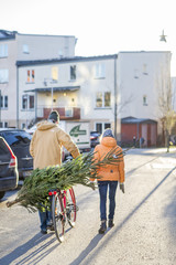 Sweden, Sodermanland, Nacka, Rear view of mature couple transporting Christmas tree on bicycle